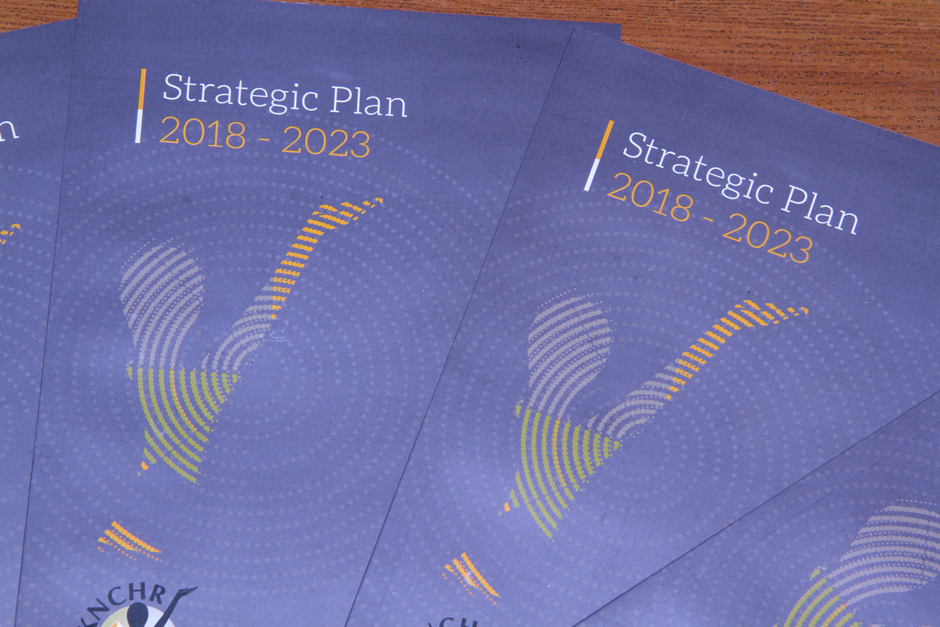 Strategic Plan 2018-2023